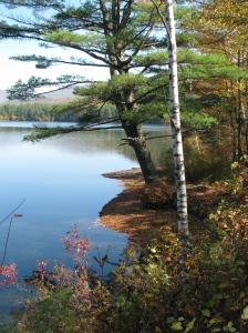 Cooper Lake 3